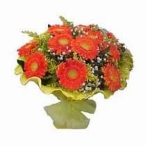 Bitlis çiçek yolla  11 adet seçme gerbera çiçegi