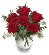 Vazo içerisinde 5 adet kırmızı gül  Bitlis çiçekçi mağazası
