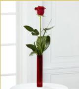 Vazo içerisinde 1 adet kırmızı gül  Bitlis internetten çiçek siparişi