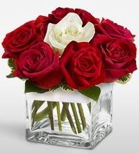Tek aşkımsın çiçeği 8 kırmızı 1 beyaz gül  Bitlis uluslararası çiçek gönderme