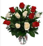 Vazo içerisinde 6 kırmızı 6 beyaz gül  Bitlis hediye çiçek yolla