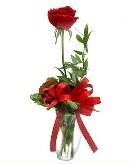 vazo içerisinde 1 adet kırmızı gül  Bitlis çiçekçi telefonları