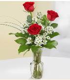 Vazo içerisinde 3 adet kırmızı gül  Bitlis çiçek satışı