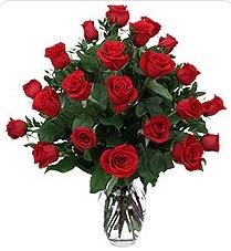 Bitlis çiçek siparişi sitesi  24 adet kırmızı gülden vazo tanzimi