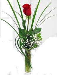 Cam içerisinde 1 kırmızı gül  Bitlis çiçek gönderme sitemiz güvenlidir