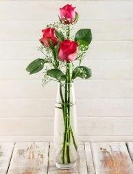 Cam içerisinde 3 kırmızı gül  Bitlis çiçek satışı
