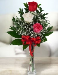 Camda 2 kırmızı 1 beyaz gül  Bitlis ucuz çiçek gönder