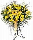 Bitlis yurtiçi ve yurtdışı çiçek siparişi  Sari kazablanka Ferforje
