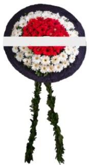 mozele çiçeği  Bitlis hediye sevgilime hediye çiçek