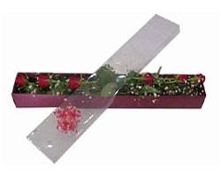 Bitlis anneler günü çiçek yolla   6 adet kirmizi gül kutu içinde