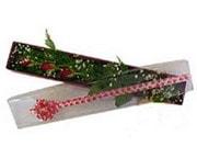 Bitlis hediye çiçek yolla  3 adet gül.kutu yaldizlidir.