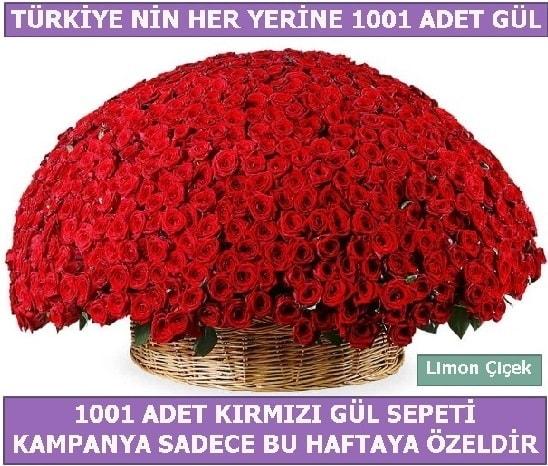 1001 Adet kırmızı gül Bu haftaya özel  Bitlis İnternetten çiçek siparişi
