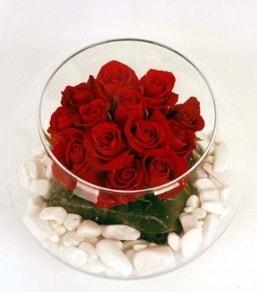 Cam fanusta 11 adet kırmızı gül  Bitlis çiçek gönderme