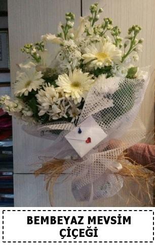 Bembeyaz görsel mevsim çiçek buketi  Bitlis çiçek yolla