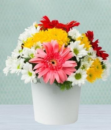 Seramik Vazoda Gelbera ve Papatya  Bitlis çiçek gönderme