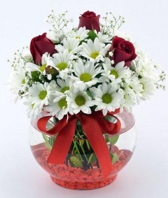 Fanusta 3 Gül ve Papatya  Bitlis internetten çiçek satışı