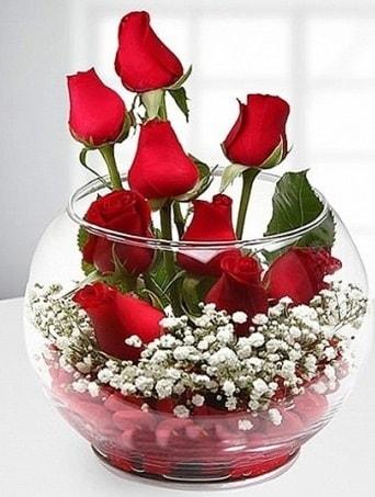 Kırmızı Mutluluk fanusta 9 kırmızı gül  Bitlis çiçek siparişi sitesi