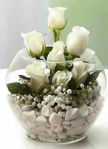 Beyaz Mutluluk 9 beyaz gül fanusta  Bitlis çiçek siparişi sitesi