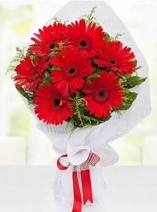 Kırmızı Gelbera Buketi  Bitlis internetten çiçek siparişi