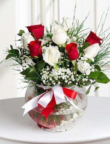 Aşk Küresi  5 beyaz 5 kırmızı gül fanusta  Bitlis internetten çiçek satışı