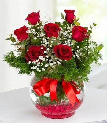 fanus Vazoda 7 Gül  Bitlis çiçek , çiçekçi , çiçekçilik