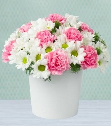 Seramik vazoda papatya ve kır çiçekleri  Bitlis çiçek siparişi sitesi