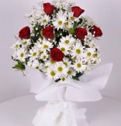 7 adet kırmızı gül ve papatyalar krizantem  Bitlis internetten çiçek satışı