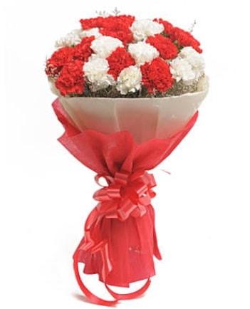 21 adet kırmızı beyaz karanfil buketi  Bitlis çiçek satışı