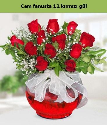 Cam içerisinde 12 adet kırmızı gül  Bitlis internetten çiçek satışı