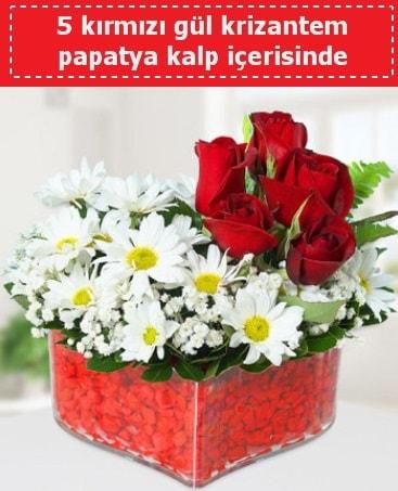 mika kalp içerisinde 5 kırmızı gül papatya  Bitlis çiçek gönderme