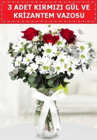 3 kırmızı gül ve camda krizantem çiçekleri  Bitlis çiçek gönderme