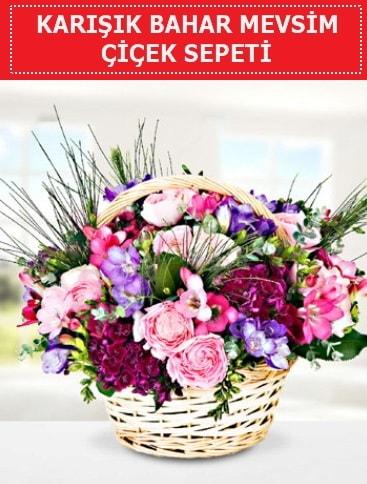 Karışık mevsim bahar çiçekleri  Bitlis ucuz çiçek gönder