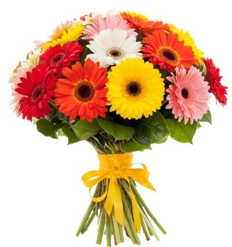 Gerbera demeti buketi  Bitlis çiçek satışı
