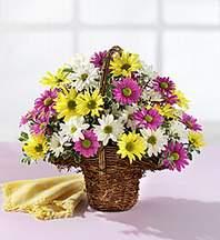 Bitlis çiçekçiler  Mevsim çiçekleri sepeti